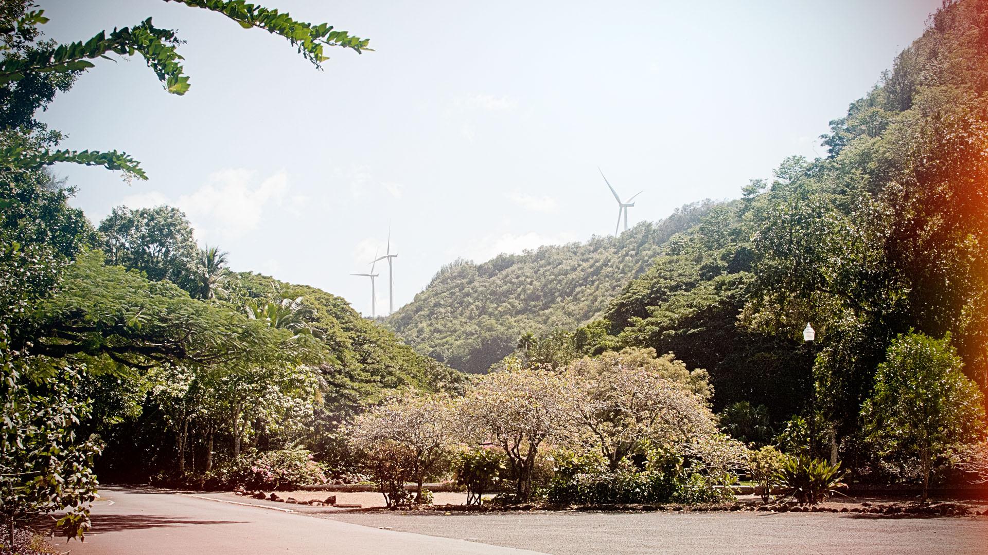 Hawaii_0002s_0002_Preset 7